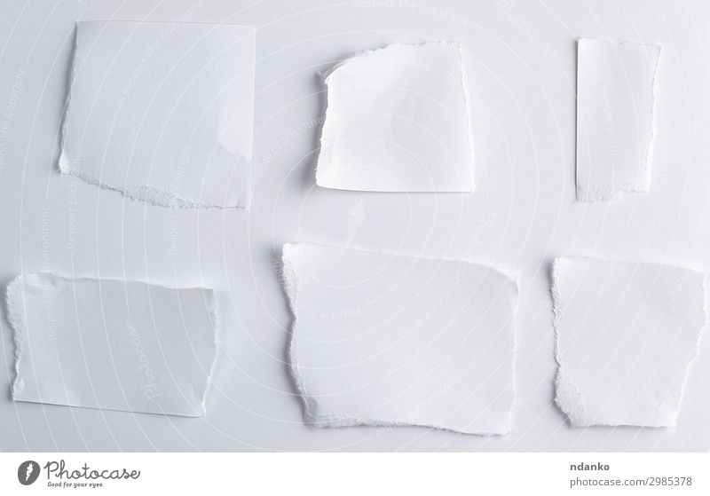 empty torn pieces of white paper Office Business Paper Collection Write Above White Idea conceptual background Blank communication Conceptual design crumpled