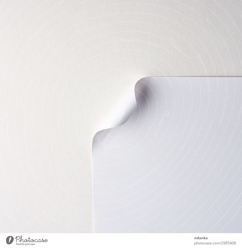 blank white sheet of paper with a curved corner Design Business Paper New Clean White background bend Blank Conceptual design Curve Document edge education