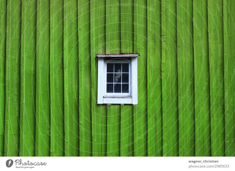 green window House (Residential Structure) Hut Building Architecture Window Wood Esthetic Green White Minimalistic Reduced Wooden board Colour photo