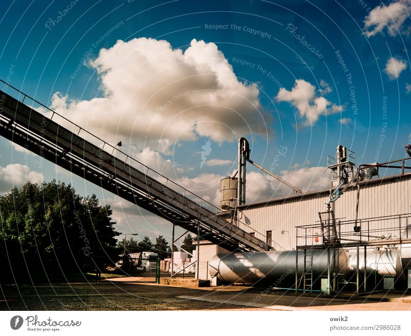 Out of service Workplace Factory Economy Agriculture Forestry Industry Logistics Sky Clouds Beautiful weather Tree Bushes Flexible Diligent Competent Complex