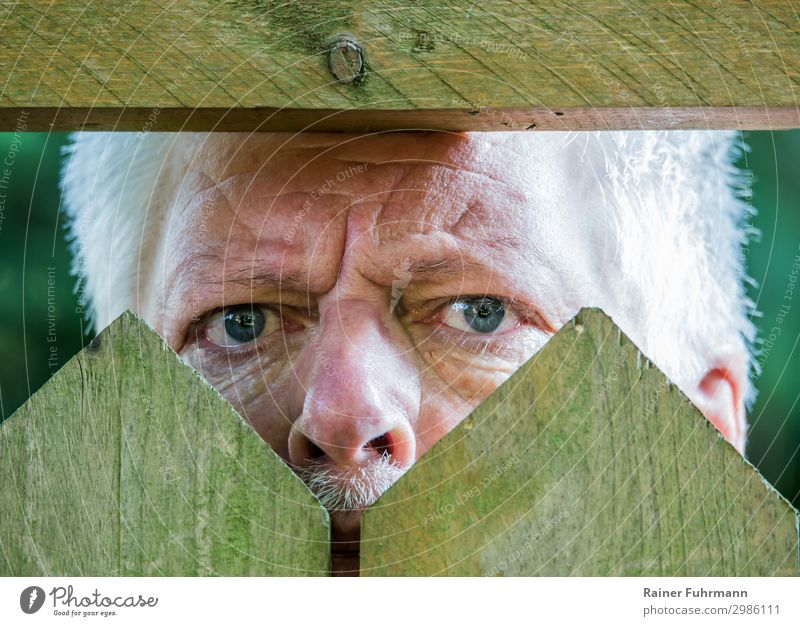 a nosy neighbor looks through a picket fence Curiosity curious Neighbor Looking Exterior shot Day Human being inquisitorial Fence Observe Straw hat