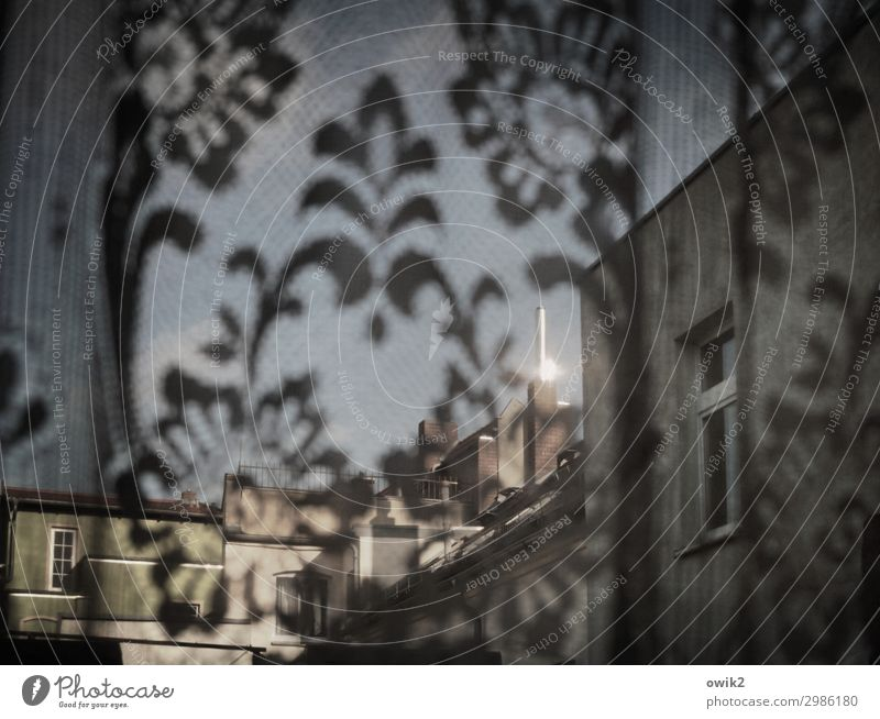 Through the curtain Small Town House (Residential Structure) Wall (barrier) Wall (building) Facade Window Chimney Curtain Illuminate Glittering Decent Curiosity