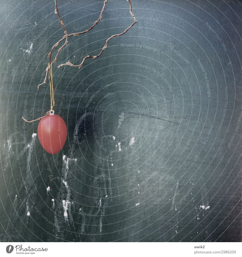 Economical Easter Easter egg String Twig Decoration Blackboard Scribbles Plastic Hang Round Red Loneliness Forget Public Holiday Colour photo Exterior shot