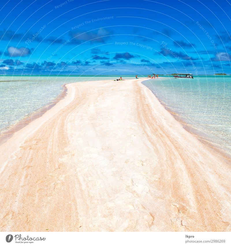 in polynesia the pink sands of the coastline Lifestyle Luxury Exotic Beautiful Relaxation Calm Vacation & Travel Tourism Cruise Summer Beach Ocean Island Nature