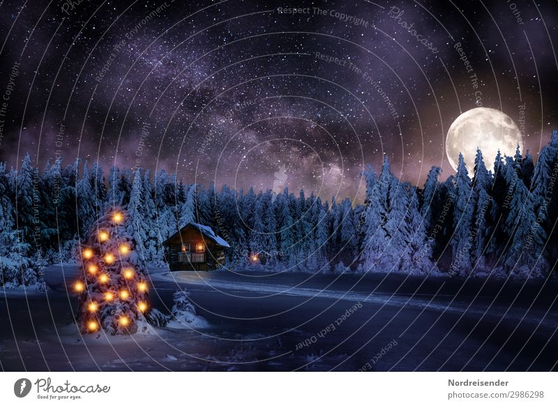 Christmas & Advent Landscape Tree House (Residential Structure) Calm Forest Winter Lanes & trails Snow Feasts & Celebrations Building Moody Living or residing