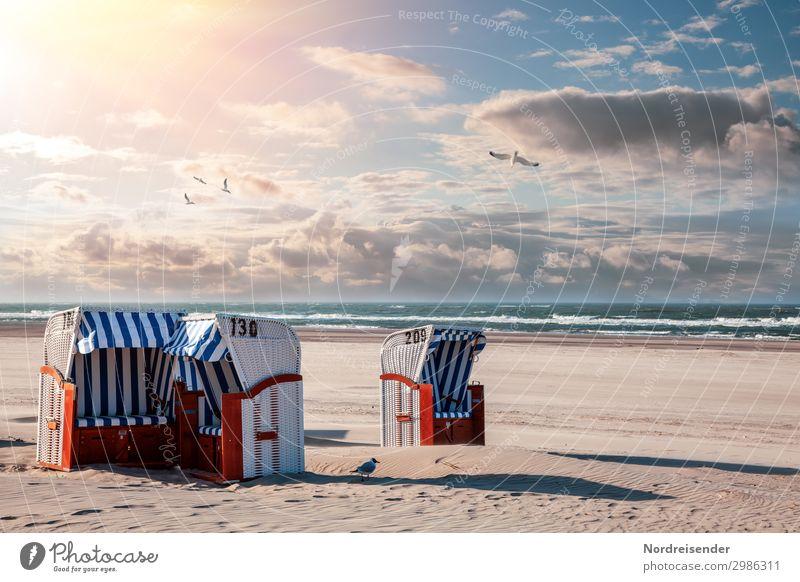 Beach chairs at the North Sea Vacation & Travel Tourism Summer Summer vacation Sun Sunbathing Ocean Waves Sand Water Sky Clouds Beautiful weather Baltic Sea