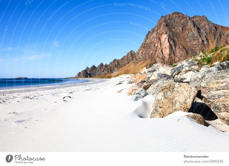 Vesterålen Vacation & Travel Tourism Adventure Far-off places Freedom Camping Summer Summer vacation Sun Beach Ocean Nature Landscape Sand Water