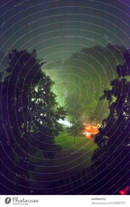 Rain at night Evening Tree Twilight Deserted Night Park Rainwater heavy rain Copy Space Residential area Meadow Grass Lawn Precipitation Fog Haze Weather Summer