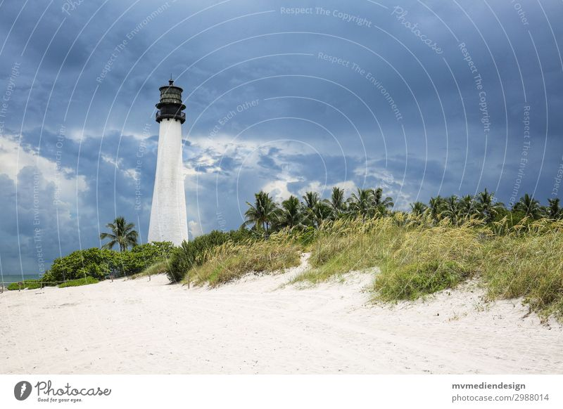 Lighthouse Key Biscayne Navigation Concern Miami Miami Beach Dune Weather Clouds Threat Colour photo Exterior shot
