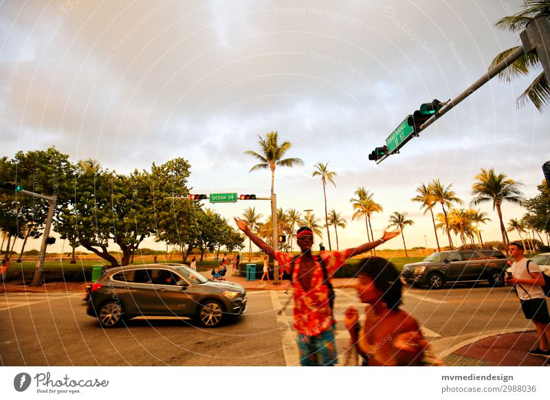 Miami Beach - Ocean Drive Street Hip & trendy Palm tree USA Florida Party Sun Colour photo Exterior shot