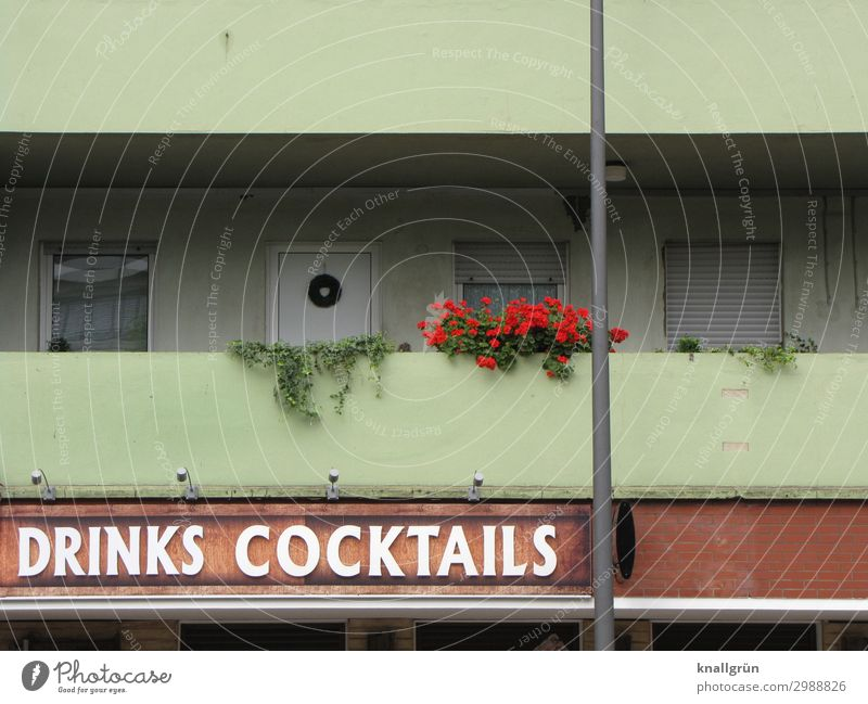 DRINKS COCKTAILS Foliage plant Geranium Ivy House (Residential Structure) Facade Balcony Window box Characters Signs and labeling Communicate Hideous Brown
