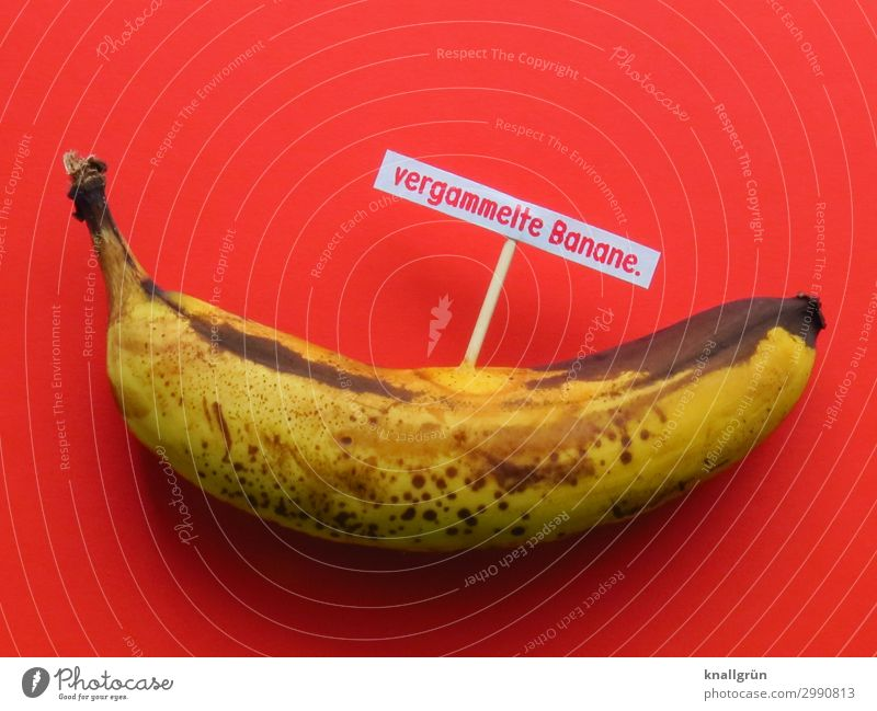 rotten banana. Food Fruit Banana Nutrition Organic produce Vegetarian diet Characters Signs and labeling Communicate Old Brown Yellow Red Emotions Squander