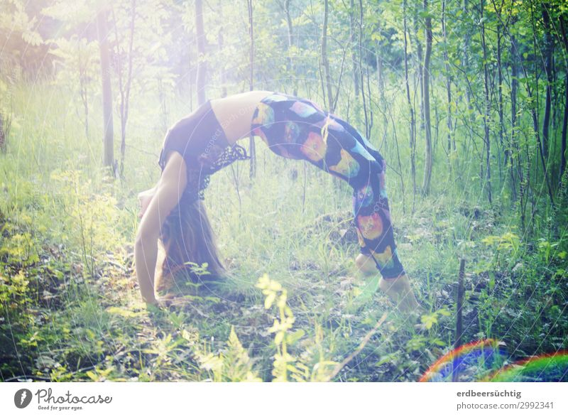 Bridge in the forest Athletic Fitness Life Yoga Feminine Body 18 - 30 years Youth (Young adults) Adults Nature Sunlight Tree Grass Bushes Forest Leggings Sports