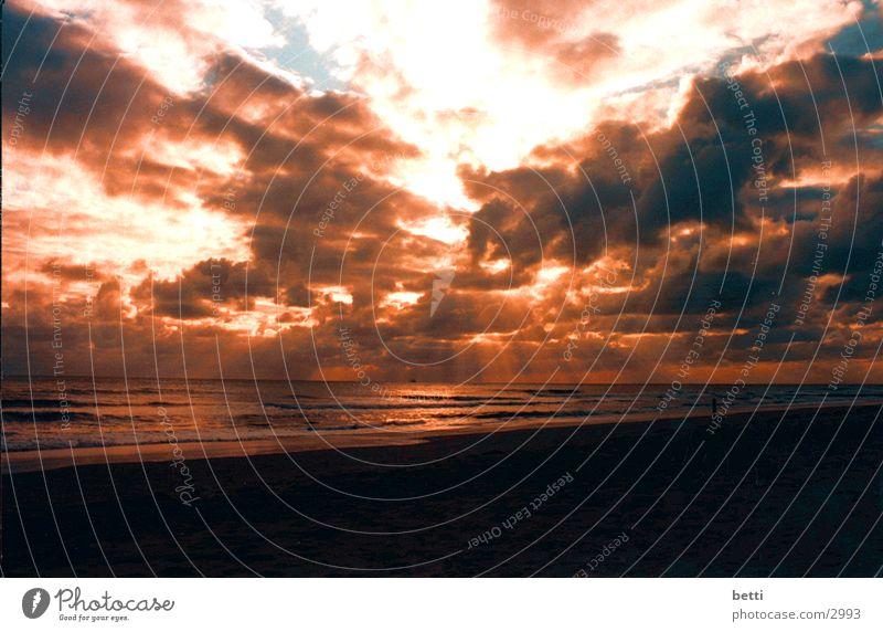 evening mood Ocean Beach Sunset Romance Orange