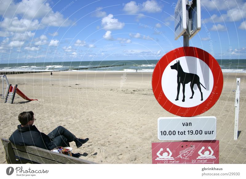 Doggies forbidden Netherlands Beach Ocean Wooden stake Low tide Signs and labeling Loneliness Boredom Water Sand Sky High tide Dogs forbidden Wait Bench Sit