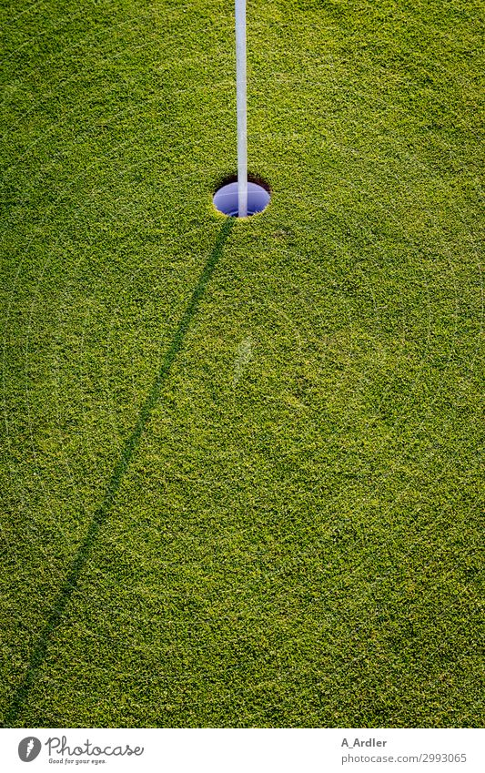 Golf - hole with shadow Lifestyle Luxury Joy Leisure and hobbies Playing Sports Fitness Sports Training Sporting event Golf course Study Nature Landscape Meadow