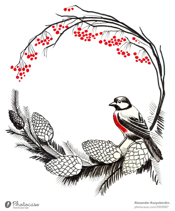 Red robin bird Nature Plant Beautiful Tree Animal Love Natural Art Bird Bright Wild Wild animal Cute Warm-heartedness Illustration Friendliness