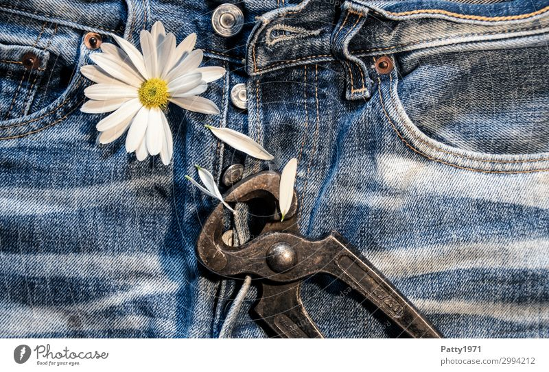 Love hurts... Tool Pair of pliers Plant Flower Blossom Blossom leave Clothing Jeans Broken Blue White Emotions Spring fever Sympathy Together Infatuation