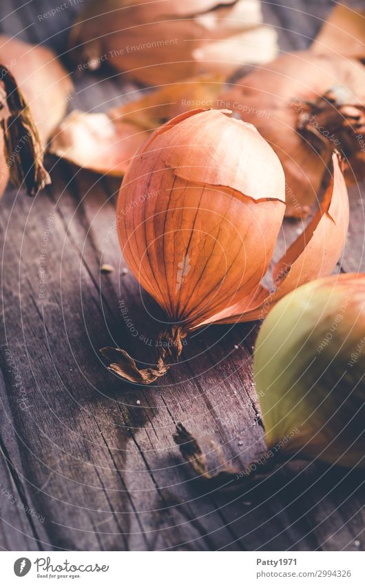 onion Food Vegetable Onion onion skin Nutrition Organic produce Vegetarian diet Wood Brown Close-up Detail Deserted