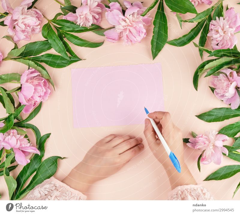 hand holds hand a white pen over empty pink sheet of paper Lifestyle Body Decoration Table Feasts & Celebrations Valentine's Day Mother's Day Wedding Birthday