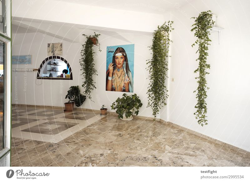 House (Residential Structure) Eating Architecture Interior design Wall (building) Feasts & Celebrations Business Building Wall (barrier) Decoration Kitchen