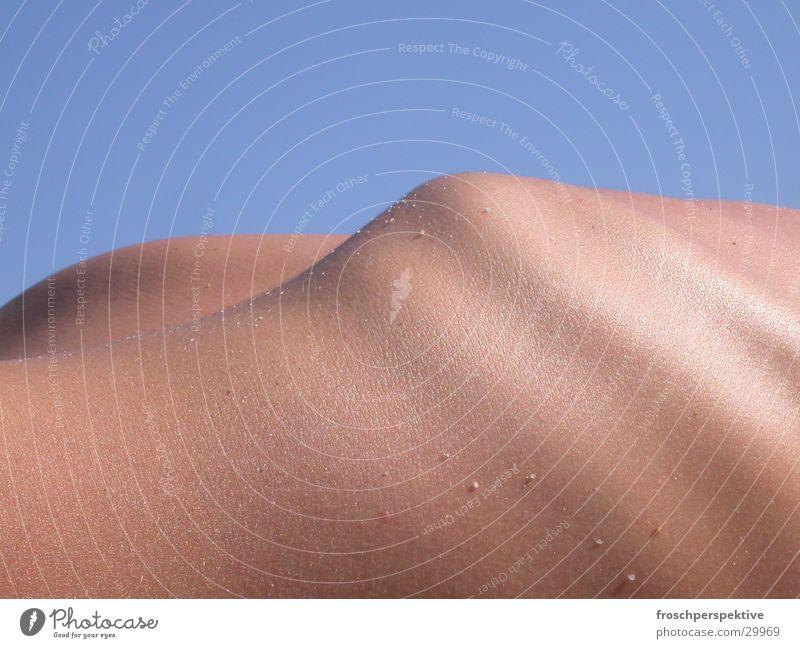 Human being Skin Sunbathing Ribs Skeleton Suntan lotion Thorax