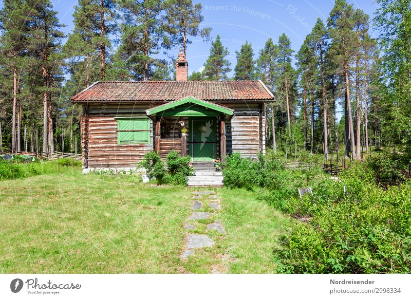 Swedish idyll Vacation & Travel Tourism Garden Nature Cloudless sky Sun Summer Beautiful weather Tree Grass Bushes Meadow Forest Outskirts Hut