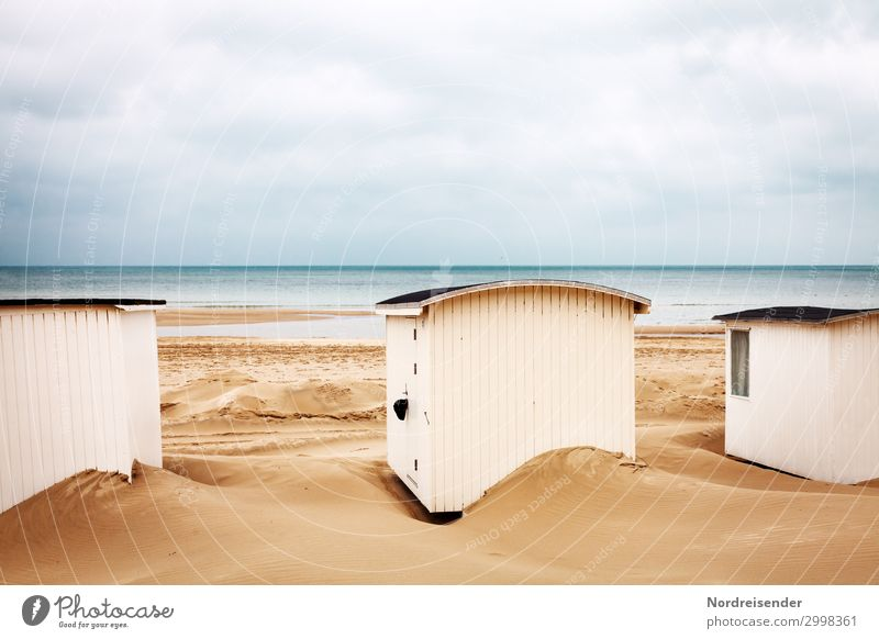 Cottage on the beach Vacation & Travel Tourism Beach Ocean Nature Landscape Elements Sand Water Coast North Sea Baltic Sea Hut Small Maritime Cute Romance
