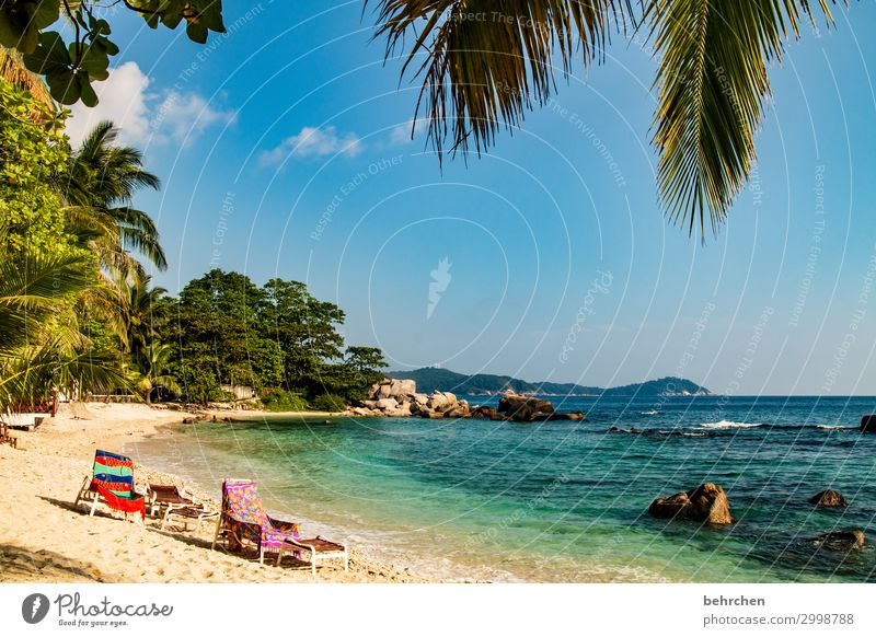 place reserved! Rock Relaxation Romance Palm tree Landscape Asia Island Virgin forest Paradise Dream island Malaya Colour photo Tourism Nature Gorgeous Beach