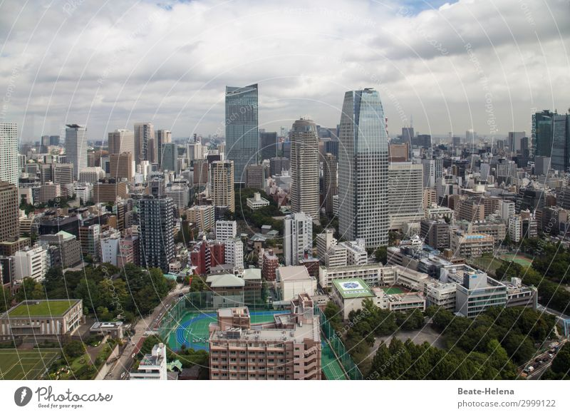 Living in Tokyo Luxury Leisure and hobbies Sporting grounds Grass surface Tourism Far-off places City trip Living or residing Skyline High-rise Ball sports