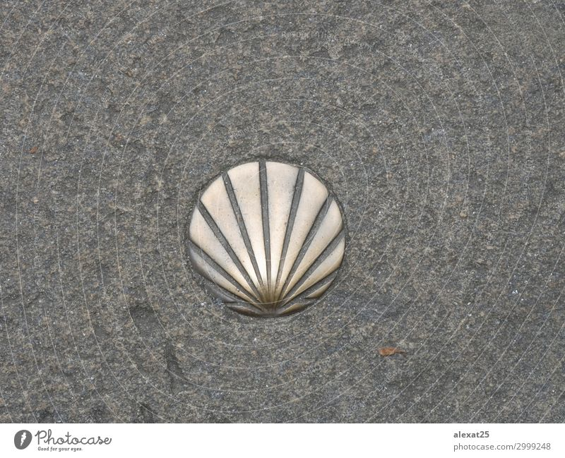 St. James shell symbol of the way Vacation & Travel Trip Street Stone Religion and faith arrow background camino catholic compostela direction Holy jacobean