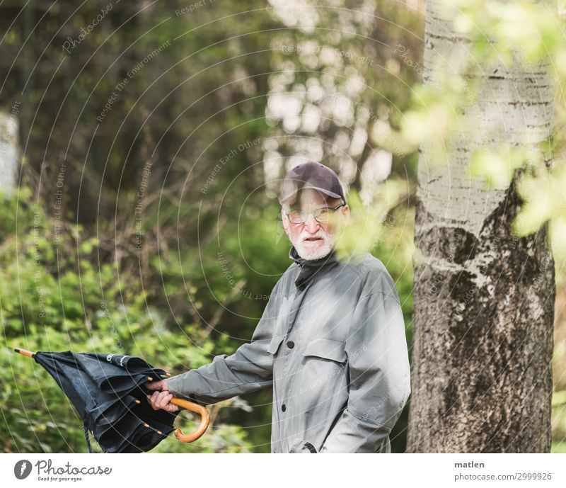 direction search Masculine Male senior Man 1 Human being 60 years and older Senior citizen Plant Tree Bushes Forest Walking Hiking Umbrellas & Shades