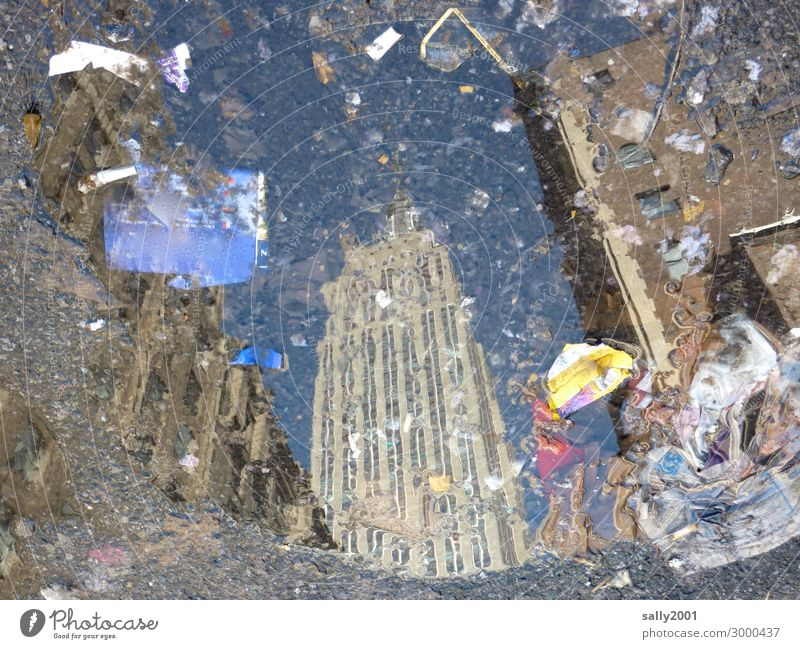 Looking into a New York puddle.... Empire State building reflection Reflection in the water Asphalt Street trash dirt New York City High-rise USA Manhattan