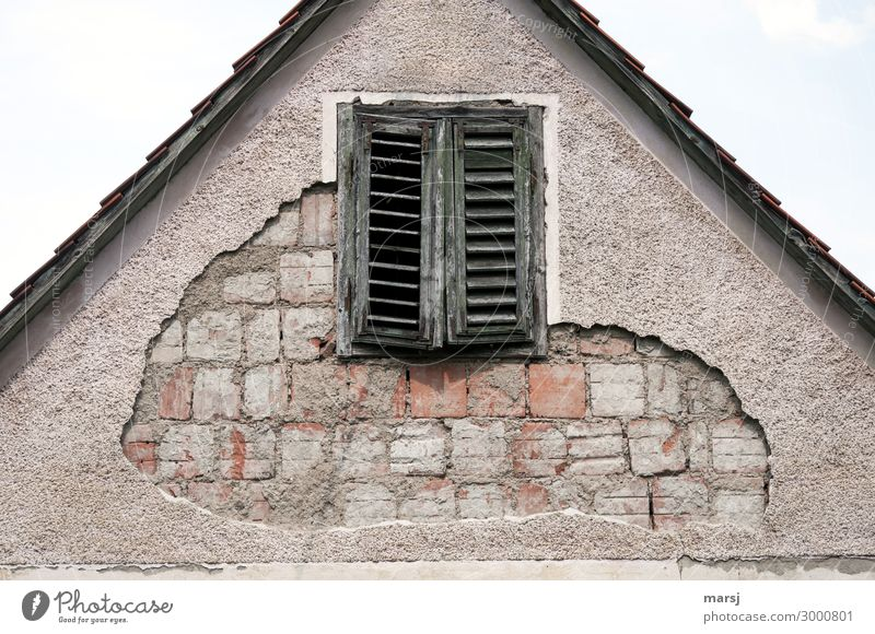 When the plaster peels off House (Residential Structure) Manmade structures Wall (barrier) Wall (building) Facade Window Shutter Brick Old Dark Creepy Cold
