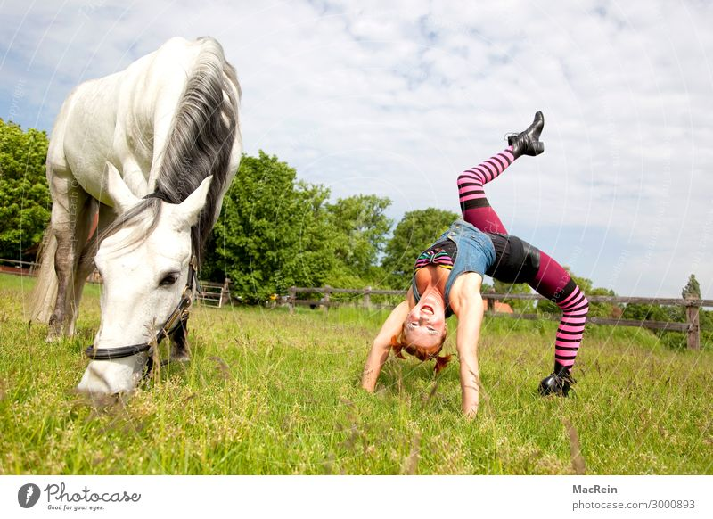 Pippi Longstocking Ride Human being Feminine Young woman Youth (Young adults) 30 - 45 years Adults Art Artist Circus Event Shows Animal Clothing Stockings