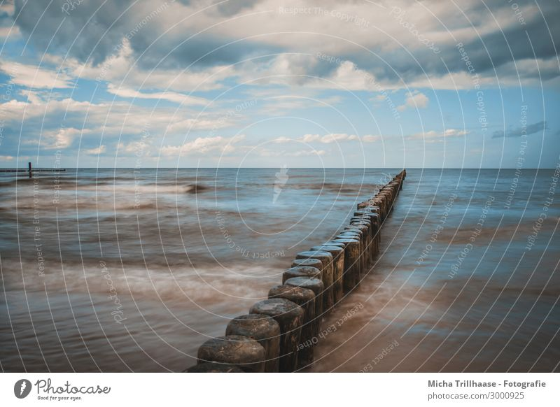 Buhnen at the Baltic Sea coast Vacation & Travel Tourism Beach Ocean Usedom Koserow Wooden stake Nature Landscape Water Sky Clouds Sunlight Movement Relaxation