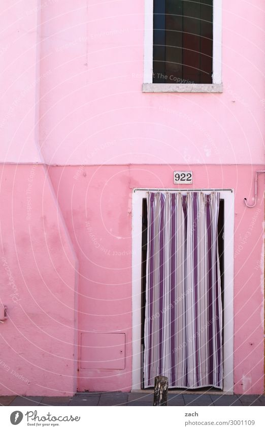 PINk Living or residing House (Residential Structure) Venice Burano Italy Fishing village Old town Wall (barrier) Wall (building) Facade Window Door Wood Violet