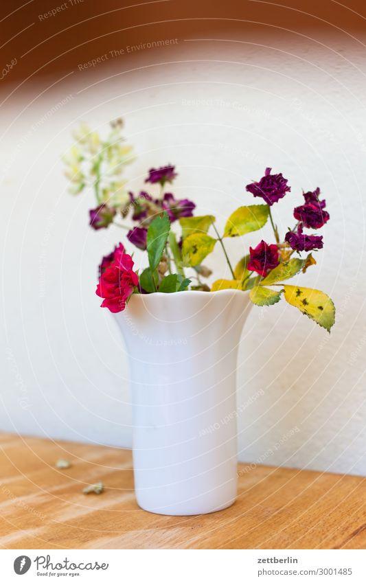 Nature Summer Plant Flower Blossom Garden Copy Space Decoration Table Blossoming Bouquet Garden plot Depth of field Vase Garden allotments Tabletop