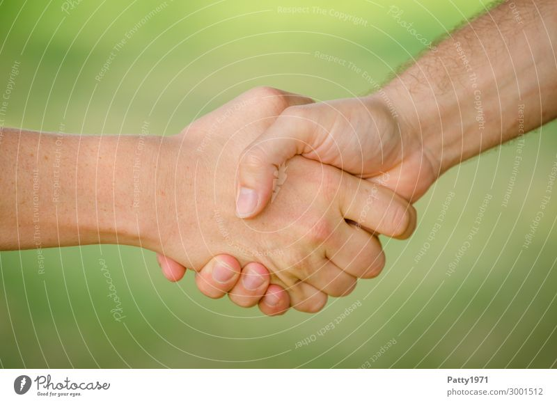 Two young men shake hands. Close up of the hands in front of a green background. Business Team Handshake Human being Masculine Young man Youth (Young adults)