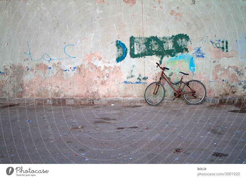 Vacation & Travel Old Loneliness Street Graffiti Wall (building) Sadness Art Tourism Wall (barrier) Trip Transport Bicycle Dirty Music Stand