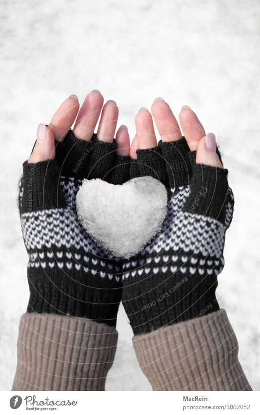 Snow heart in your hand Playing Winter Human being Woman Adults Hand Gloves Heart Love Cold Clean White Emotions Heart-shaped Fingers Retentive Colour photo