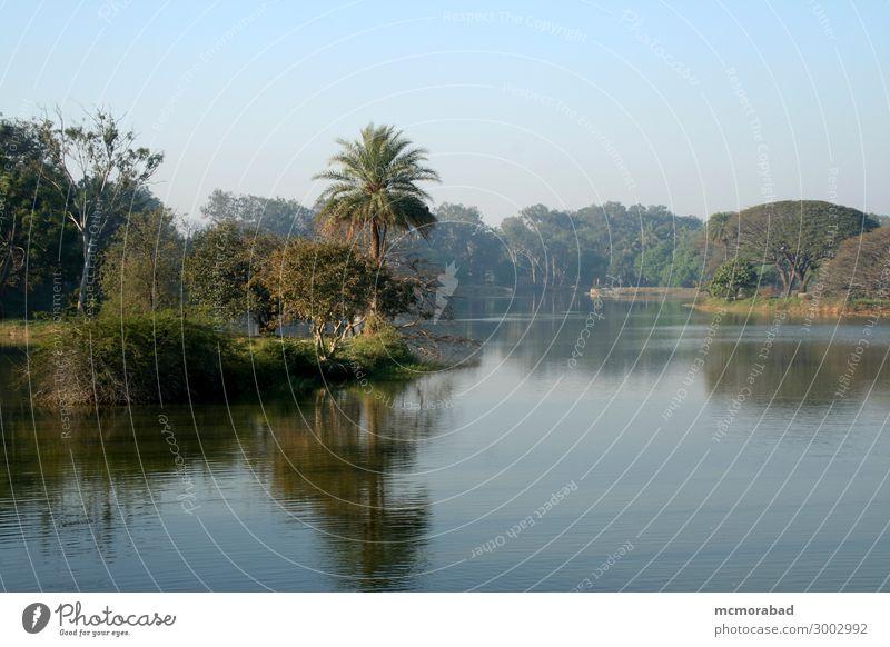Lake and Landscape Sky Nature Plant Blue Beautiful Green Tree Leaf Calm Vantage point Cool (slang) Serene Pond Peaceful