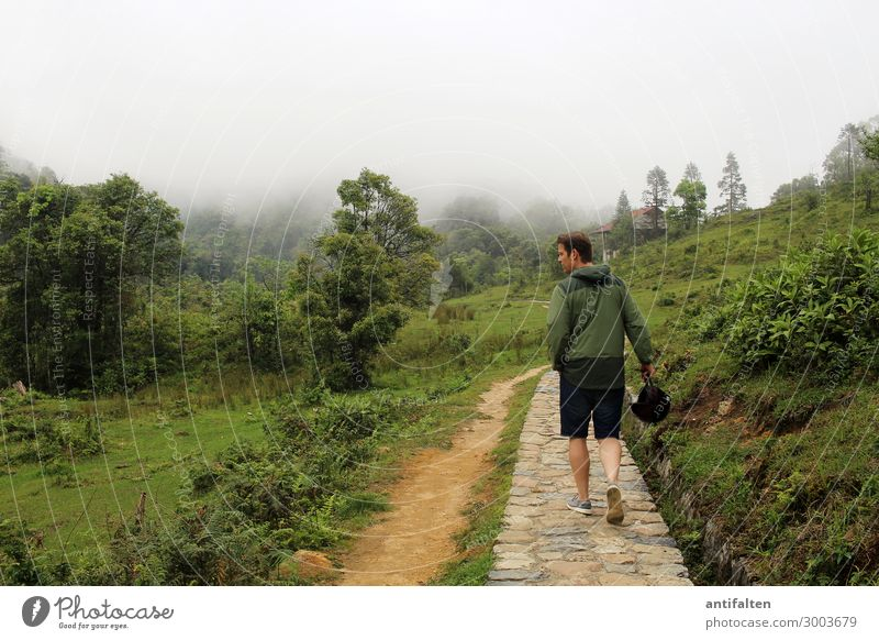 All so beautiful green here Vacation & Travel Tourism Adventure Far-off places Freedom National Park Human being Masculine Man Adults Partner Life Body 1
