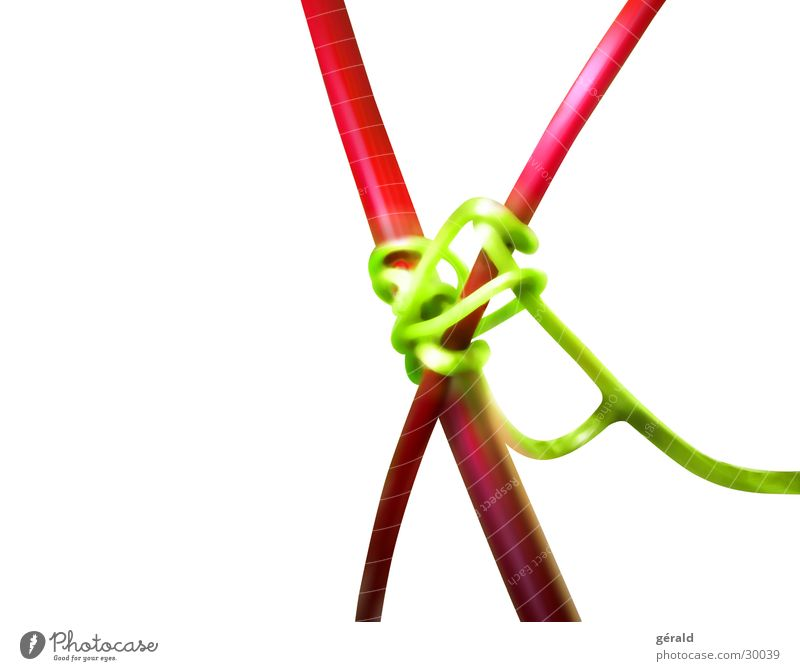 nature graphic Plant Stalk Macro (Extreme close-up) Red Green White Illustration Nature