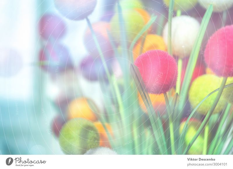Abstract background of decorative balls Nature Blue Colour Beautiful Green Red Black Yellow Happy Feasts & Celebrations Art Exceptional Pink Design Decoration