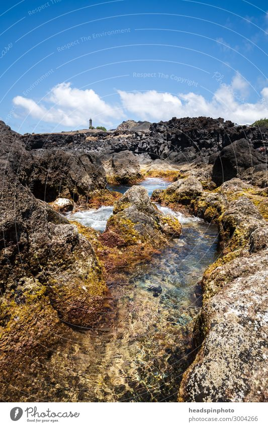 Volcanic coastal landscape of Faial with lighthouse, Azores Vacation & Travel Tourism Trip Summer Beach Ocean Waves Landscape Elements Water Volcano Coast Reef