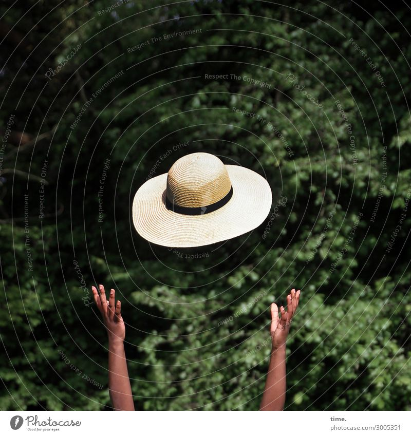 summer in the park Feminine Woman Adults Arm Hand 1 Human being Environment Nature Beautiful weather Park Forest Hat Relaxation Catch Flying Free Happiness Joy