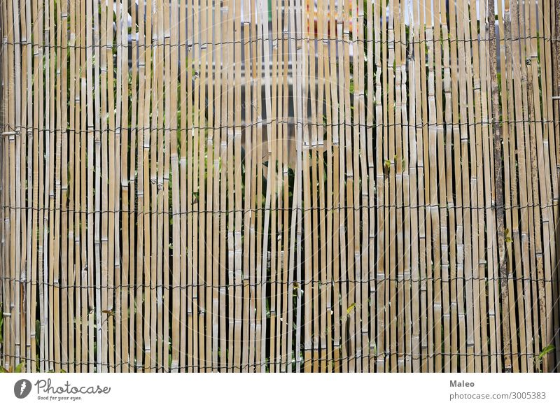 bamboo fence Fence Wire Bamboo stick Branch Brown Design Detail Garden Nature Natural Pattern Rough Stick Tradition Wood Abstract Barrier Wooden board Bushes