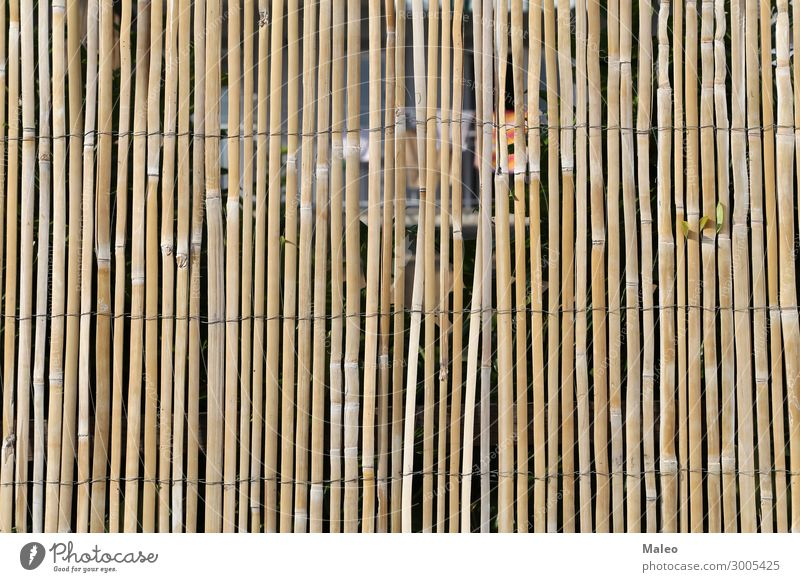 bamboo fence Fence Wire Bamboo stick Branch Brown Design Detail Garden Nature Pattern Rough Stick Tradition Wood Abstract Barrier board Match Blade of grass