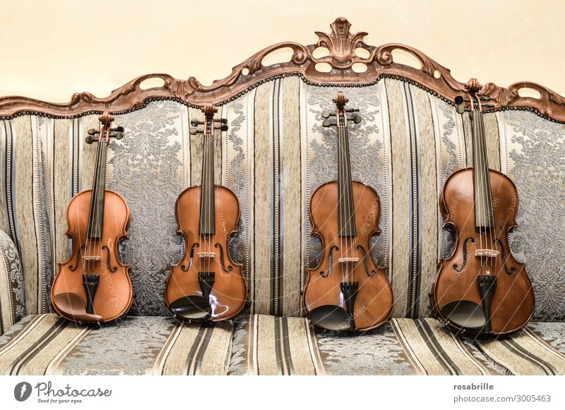 Violins are valuable. Elegant Leisure and hobbies Sofa Living room Music Education Musician Orchestra Collection Playing Old Brown Diligent Interest